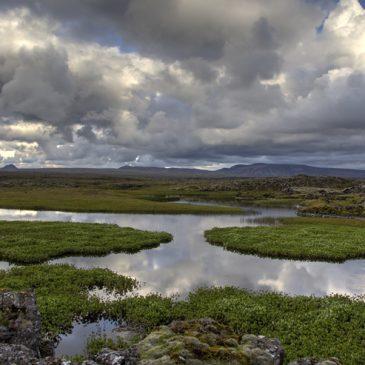 Slóð eyðileggingar í boði Landsnets