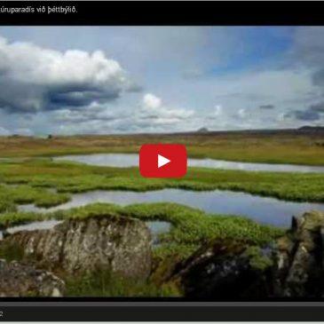 Reykjanesskagi – náttúruparadís við þéttbýlið.
