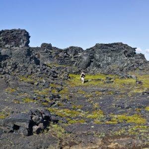 Innan um hraunborgir í Katlahrauni, sem er á allan hátt magnaður staður að skoða.